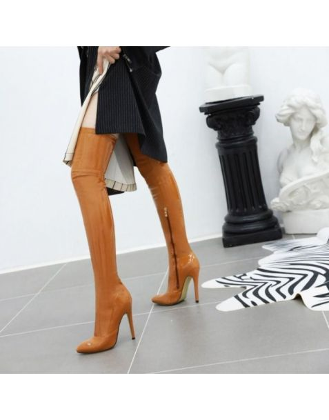 Aryanna - Sexy Fashion Women's Knee High Boots